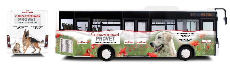 Clinica Veterinara Provet - Bacau