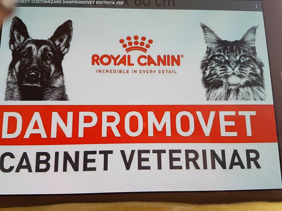 Cabinet Veterinar Dan Moldovan - Bistrita