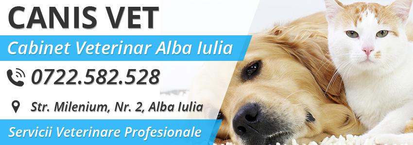 Cabinet veterinar  Canis Vet - Alba Iulia