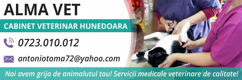 Cabinet Veterinar Alma Vet - Hunedoara