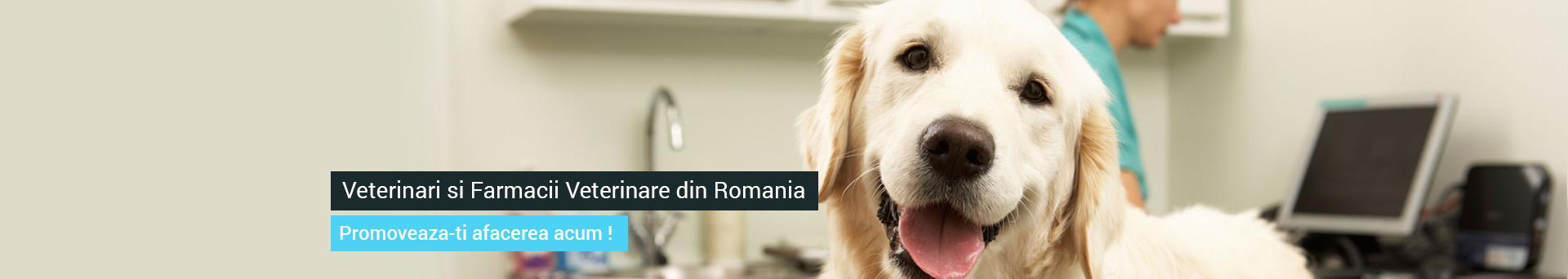Farmacie veterinara Bucuresti