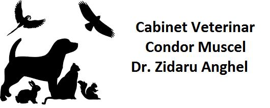 Cabinet Veterinar Condor Muscel - Dr. Zidaru Anghel