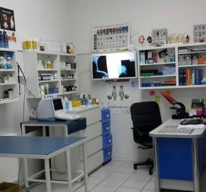 Cabinet Veterinar Prolife Vet - Dr. Brisan Minodora